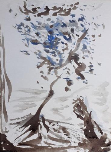 arbre 1995.jpg