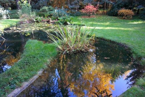 Jardin Albert-Kahn 4.JPG