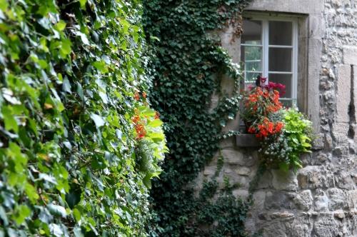 Tübingen fenêtre.jpg