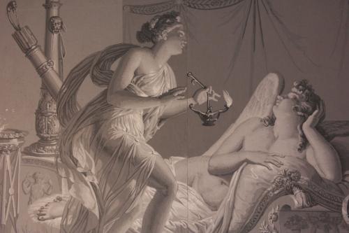 frédéric tison,photographie,musée de la révolution française,salle de psyché,amour et psyché,papier peint