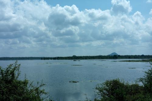 1. Sri Lanka - lac de Tissa.JPG