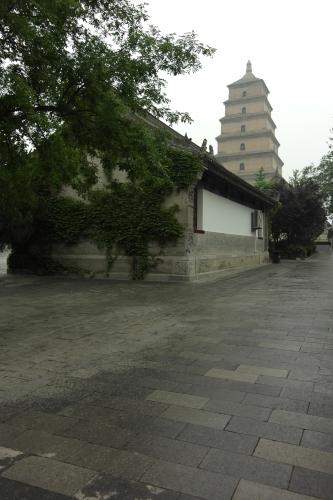 chine,xi'an,frédéric tison,photographie,grande pagode de l'oie sauvage
