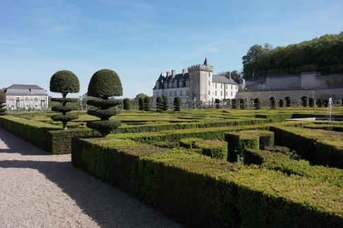 frédéric tison,photographie,château de villandry,jardin de broderies,jardins du château de villandry
