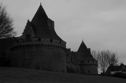 frédéric tison,photographie,château des rohan,château de pontivy