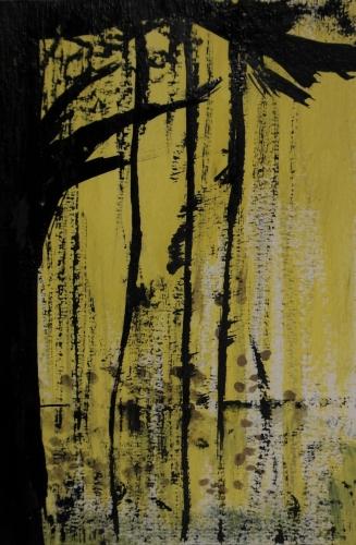 frédéric tison,ombres jaunes,encre de chine,gouache