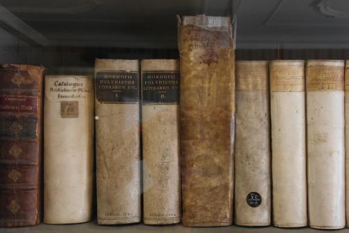 Goethehaus 4 - bibliothèque.jpg