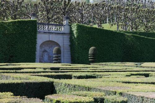 frédéric tison,photographie,château de villandry,jardin de broderies