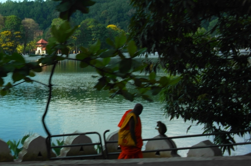 Kandy - Le moine et le singe.jpg