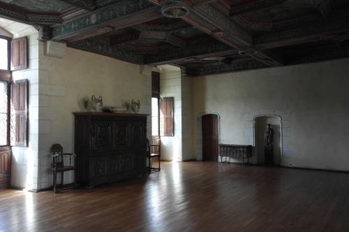 frédéric tison,photographie,château du plessis-bourré,plafond alchimique