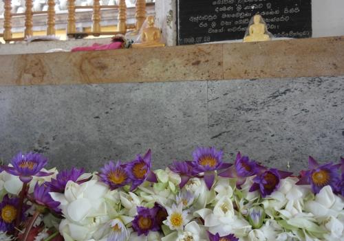 4. Arbre de Bhô - autel.jpg