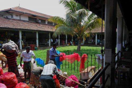 Kandy - marché 2.jpg