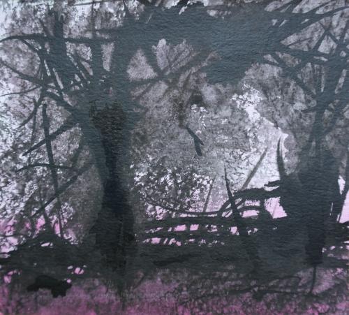 Forêt noire et rose - 2019.jpg