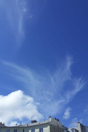 les ailes mystérieuses.jpg