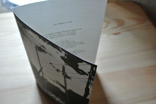 """""""les herbes le soir"""",poème,photogravure,frédéric tison,renaud allirand"""